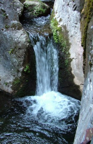 waterfall lores