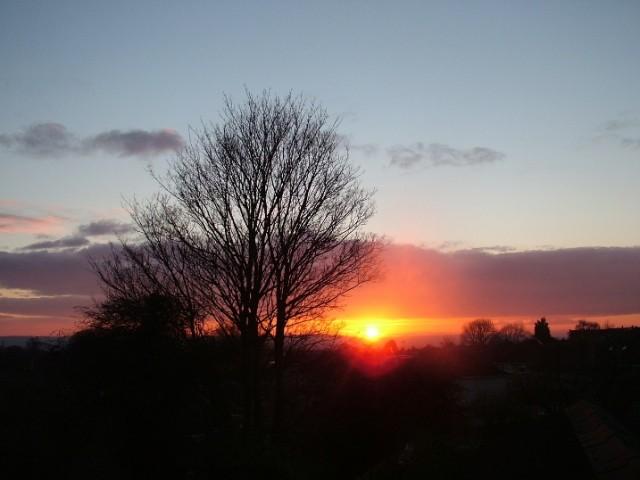 fionastolze sunset