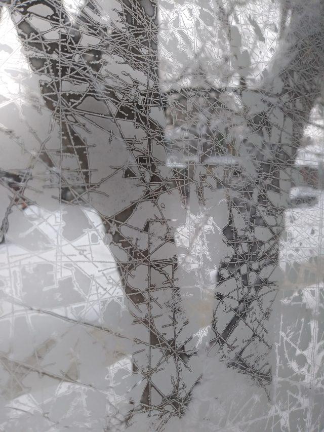 Fiona Stolze winter in edmonton